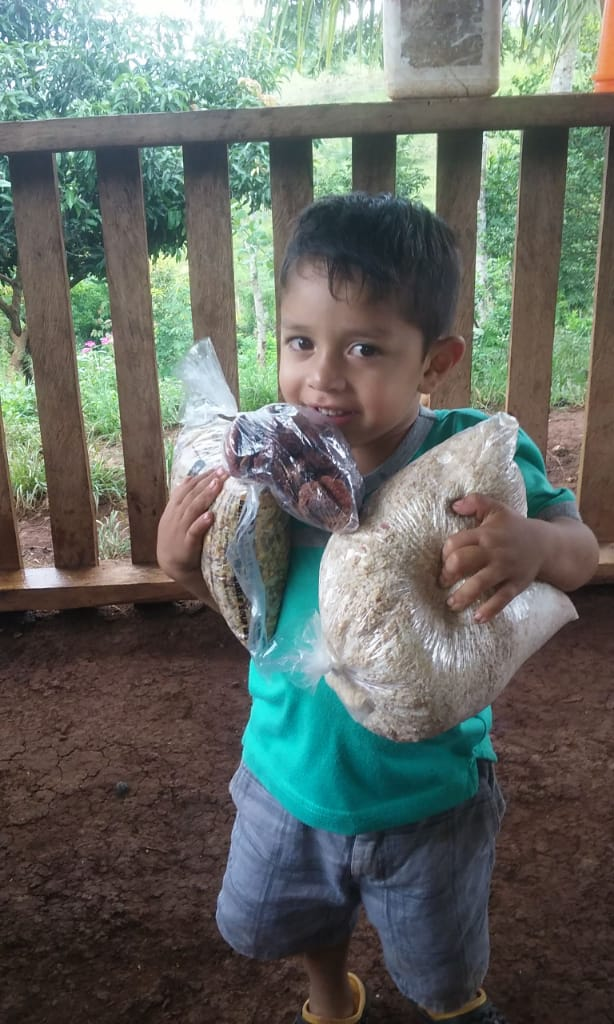 A young boy holds bags of food.