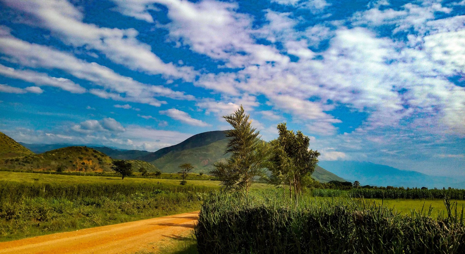 A mountain in Uganda under a bright blue sky with clouds.